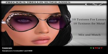 Precious Trellis Sunglasses AD